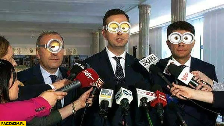Petru Schetyna oczy Minionki przeróbka Kosiniak-Kamysz konferencja prasowa
