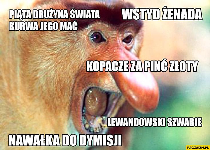 Piąta drużyna świata, wstyd żenada, kopacze za pięć złotych, Lewandowski szwabie, Nawałka do dymisji. Typowy Polak nosacz małpa po meczu