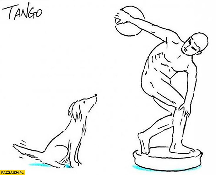 Pies czeka aż człowiek rzuci dysk rzeźba
