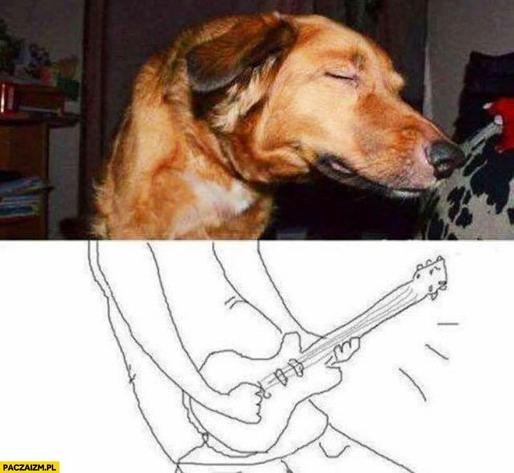 Pies gra na gitarze solówka dorysowany dół obrazka zdjęcia