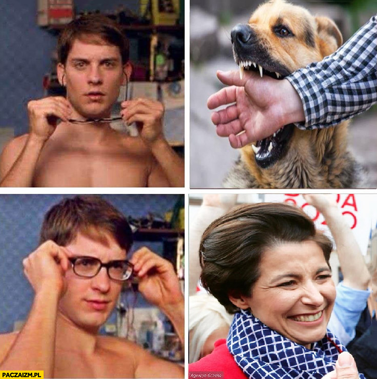 Pies gryzie zakłada okulary to Turczynowicz-Kieryłło szefowa kampanii Andrzeja Dudy