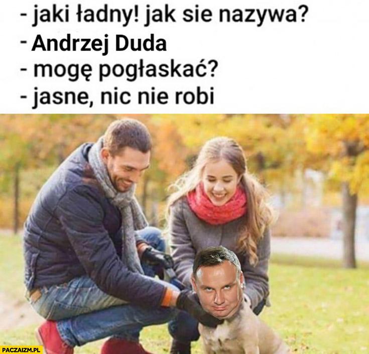 Pies jak się nazywa? Andrzej Duda, mogę pogłaskać, jasne nic nie robi