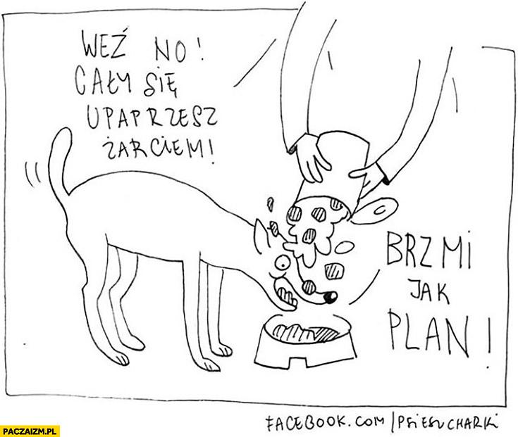 Pies jedzenie weź no cały się upaprzesz żarciem, brzmi jak plan psie sucharki