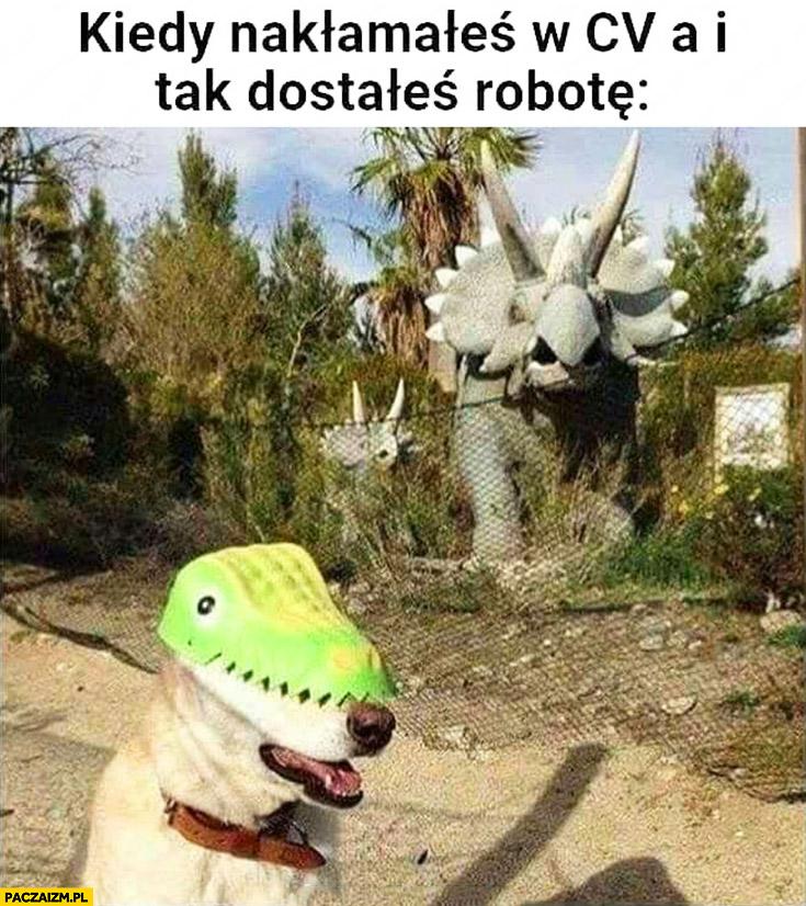 Pies kiedy nakłamałeś w CV a i tak dostałeś te robotę dinozaury