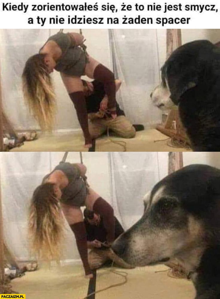 Pies kiedy zorientowałeś się, że to nie jest smycz a Ty nie idziesz na żaden spacer laska dziewczyna wisi
