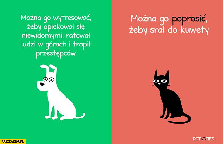 Pies – można go wytresować żeby opiekował się niewidomymi, ratował ludzi, tropił przestępców. Kot – można go poprosić żeby srał do kuwety. Kot vs pies