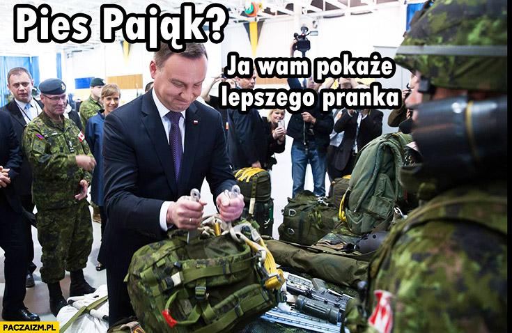 Pies pająk ja wam pokażę lepszego pranka Andrzej Duda