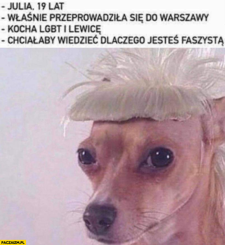 Pies piesek Julia 19 lat właśnie przeprowadziła się do Warszawy kocha LGBT i lewicę chciałaby wiedzieć dlaczego jesteś faszystą
