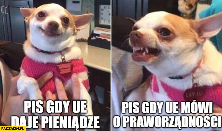 Pies piesek PiS gdy unia UE daje pieniądze vs PiS gdy UE mówi o praworządności Unia Europejska
