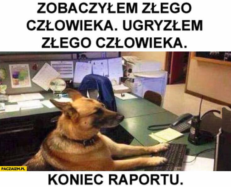 Pies policjant zobaczyłem złego człowieka, ugryzłem złego człowieka, koniec raportu