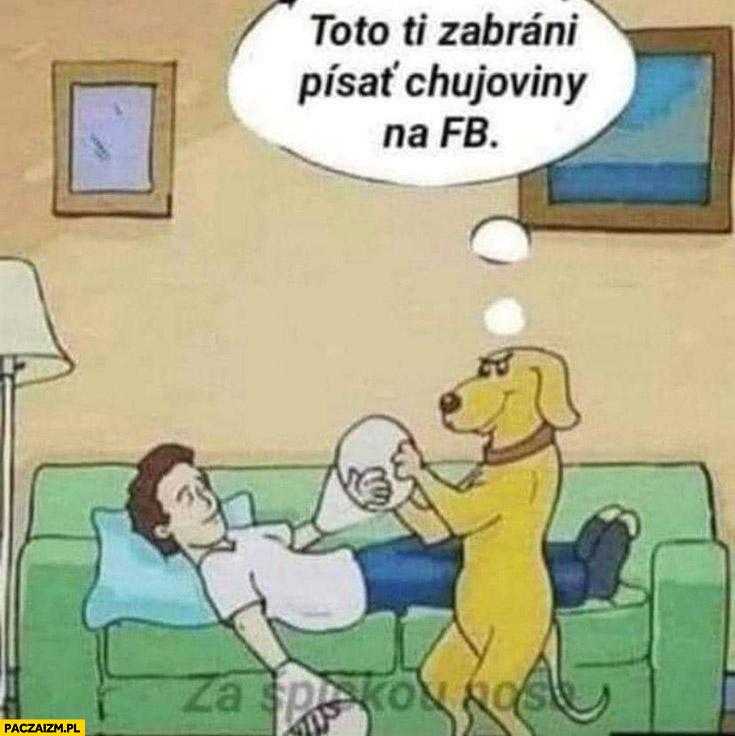 Pies zakłada panu klosze na ręce to ci zabroni pisać bzdur na fb facebooku
