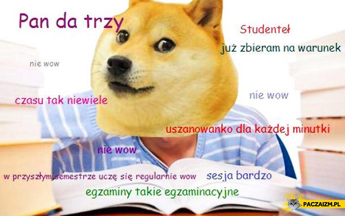 Pieseł student