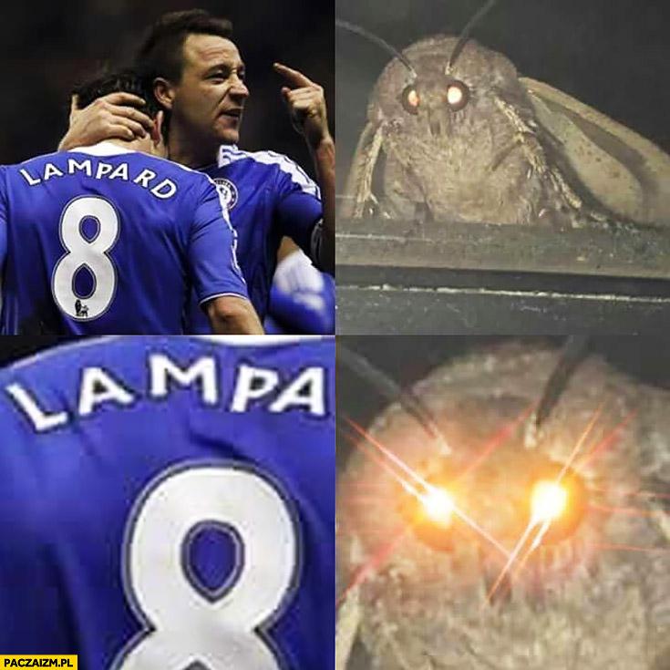Piłkarz zawodnik Lampard ćma widzi lampa oczy się świecą