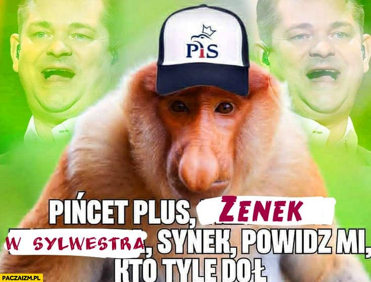 Pińcet plus Zenek w sylwestra synek powiedz mi kto tyle doł nosacz małpa wyborca PiS