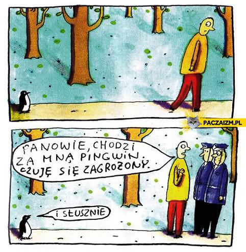 Pingwin zagrożenie