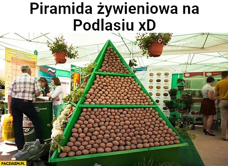 Piramida żywieniowa na Podlasiu same ziemniaki