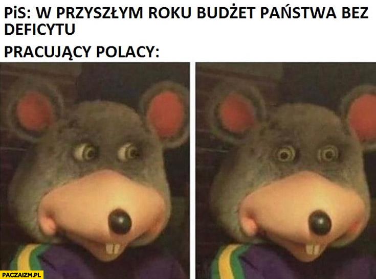 PiS: w przyszłym roku budżet państwa bez deficytu, pracujący Polacy przerażeni