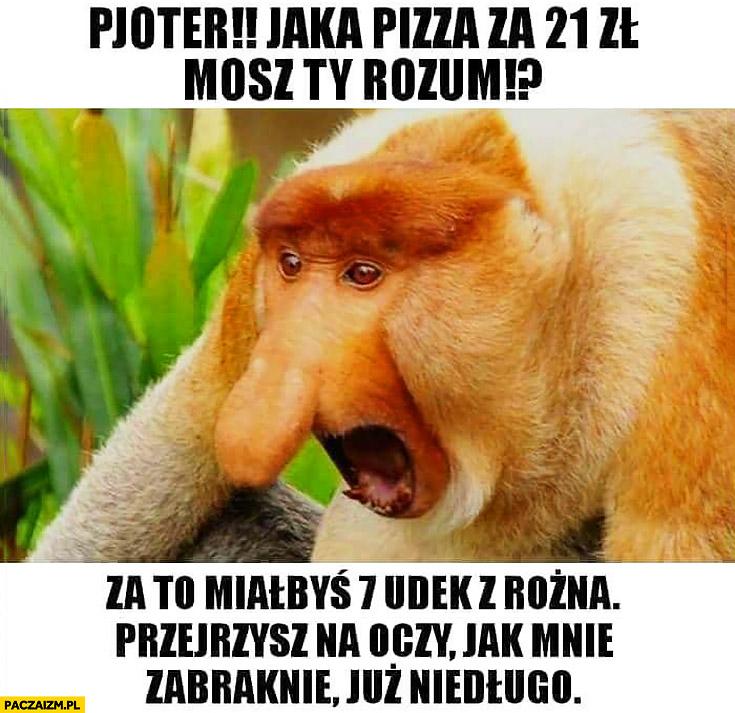 Pjoter jaka pizza za 21zł? Za to miałbyś 7 udek z rożna, przejrzysz na oczy jak mnie zabraknie już niedługo typowy Polak nosacz małpa