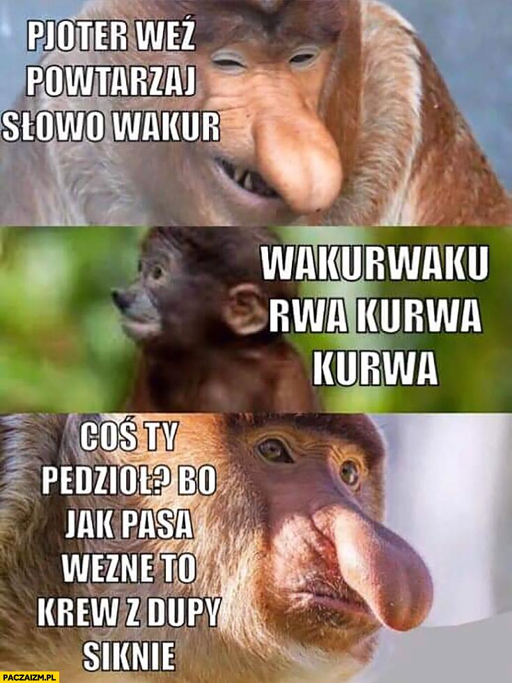 Pjoter weź powtarzaj słowo wakur coś Ty powiedział, bo jak pasa wezmę krew z dupy siknie typowy Polak nosacz małpa