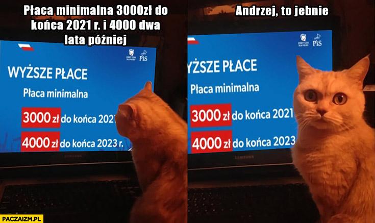Płaca minimalna 3000, 4000 kot Andrzej to jebnie