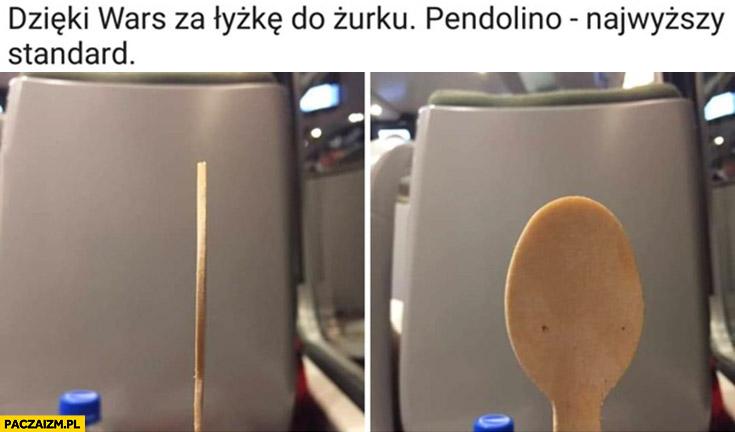 Płaska łyżka do zupy żurku w Wars Pendolino