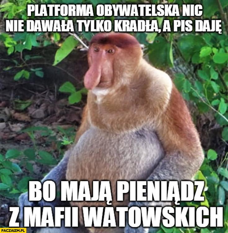 Platforma nic nie dawała tylko kradła a PiS daje bo maja pieniądz z mafii watowskich typowy Polak nosacz małpa