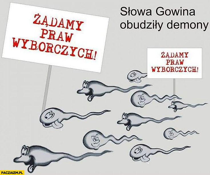 Plemniki żądamy praw wyborczych słowa Gowina obudziły demony