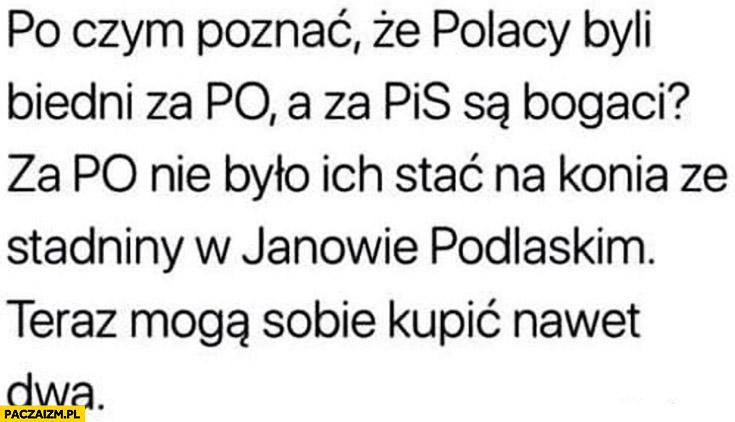 Po czym poznać, że Polacy byli biedni za PO a za PiS są bogaci? Nie stać ich było na konia ze stadniny w Janowie Podlaskim, teraz mogą sobie kupić nawet dwa
