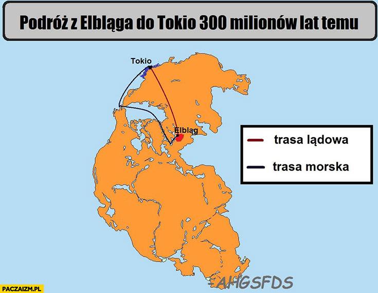 Podróż z Elbląga do Tokio 300 milionów lat temu trasa lądowa, trasa morska