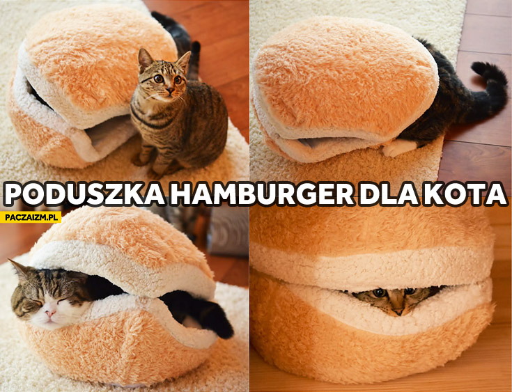 Poduszka hamburger dla kota