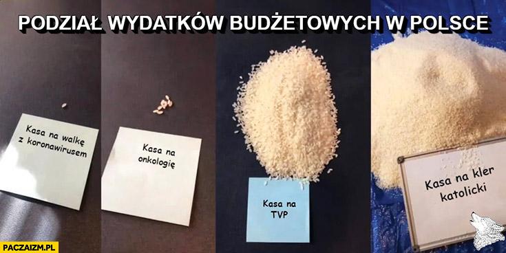 Podział wydatków budżetowych w Polsce: koronawirus, onkologia, TVP, kler pokazane na przykładzie ryżu