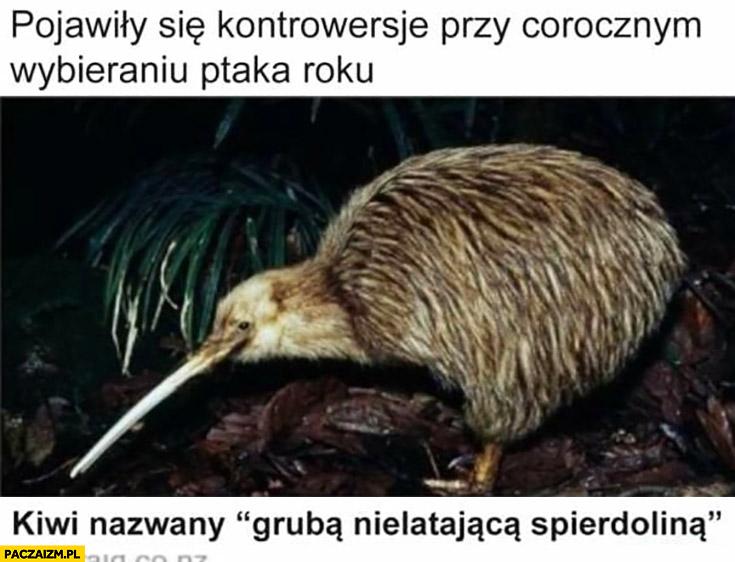 Pojawiły się kontrowersje przy corocznym wybieraniu ptaka roku kiwi nazwany gruba nielatającą spierdzieliną