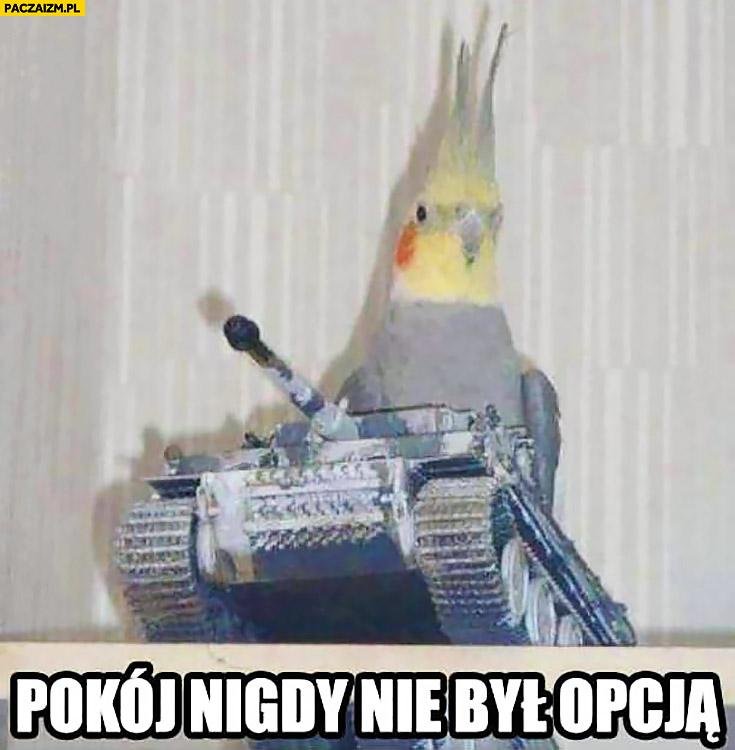 Pokój nigdy nie był opcją papuga papużka na czołgu