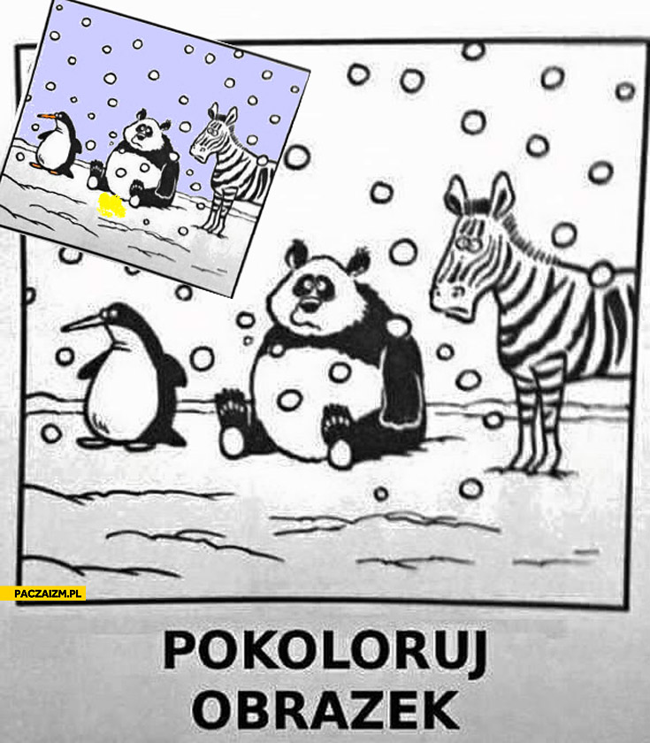 Pokoloruj obrazek: pingwin, panda, zebra na śniegu