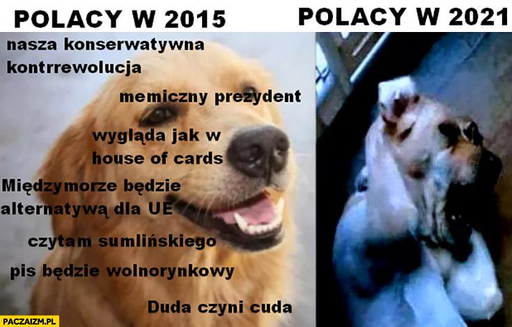 Polacy w 2015 pies PiS będzie wolnorynkowy Duda czyni cuda vs w 2021 przerażony psy