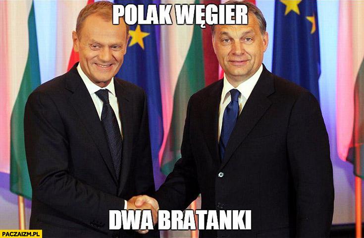 Polak Węgier dwa bratanki Donald Tusk Viktor Orban