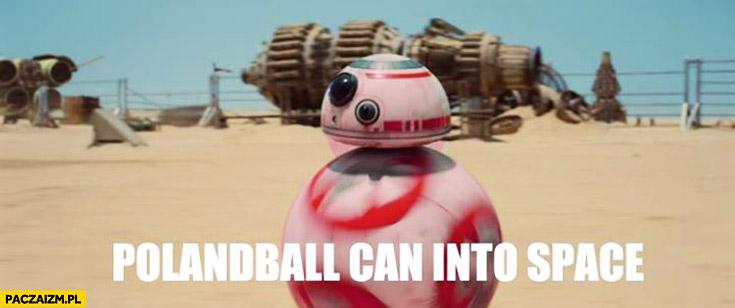 Polandball can into space