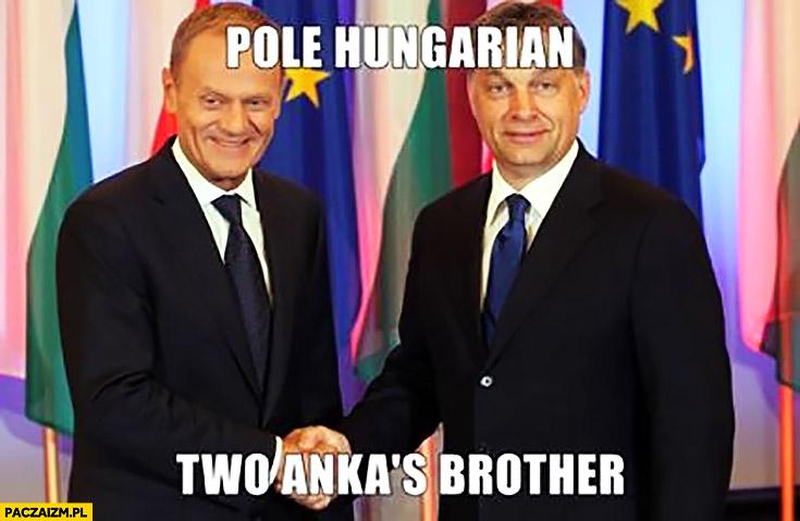 Pole Hungarian two Anka's brother. Angielski z Tuskiem Polak Węgier dwa bratanki Orban