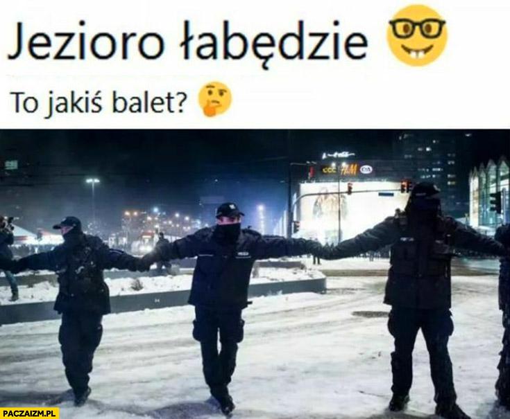 Policja policjanci to jakiś balet jezioro łabędzie trzymają się za ręce