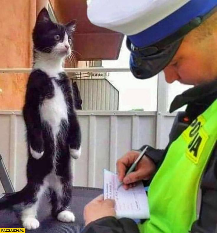 Policjant spisuje zdziwionego kota daje mu mandat