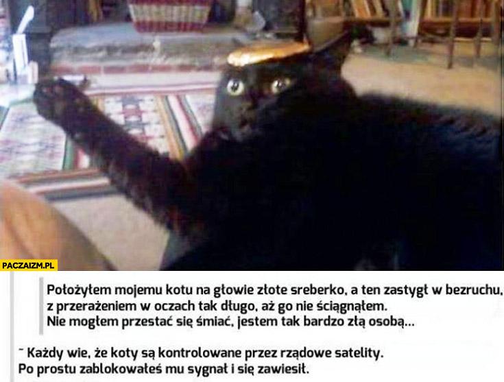 Położyłem kotu na głowie sreberko zastygł w bezruchu koty są kontrolowane przez rządowe satelity zablokowałeś mu sygnał i się zawiesił