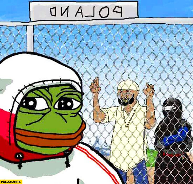 Polska imigranci płot smutna żaba