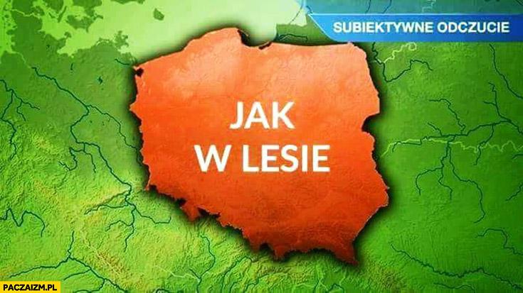 Polska jak w lesie mapa mapka polski prognoza pogody mapka subiektywne odczucie