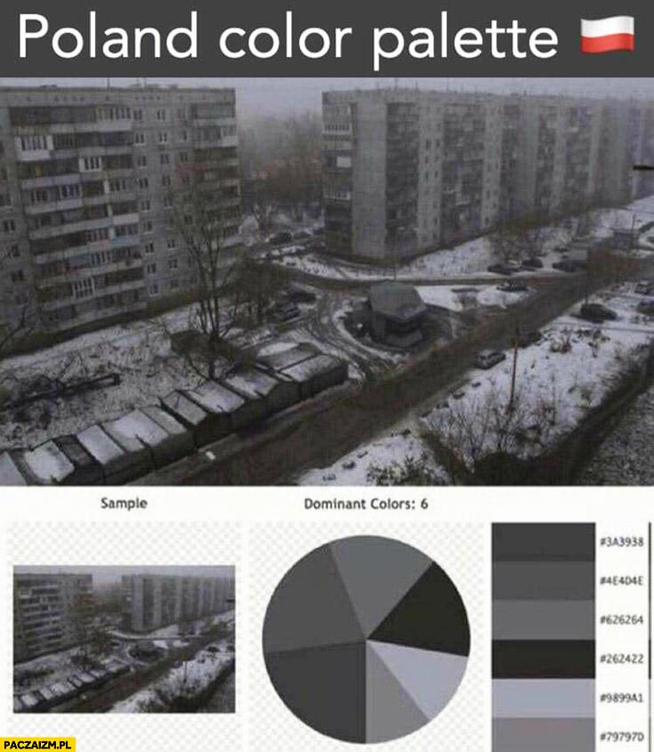Polska paleta kolorów Polski same odcienie szarości