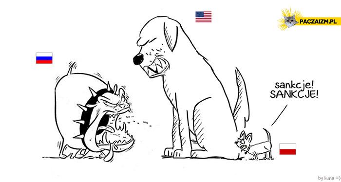 Polska pies sankcje sankcje USA Rosja