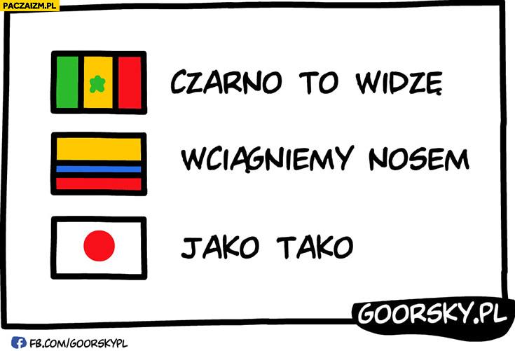 Polska Senegal czarno to widzę, Kolumbia wciągniemy nosem, Japonia jako tako goorsky
