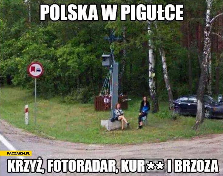 Polska w pigułce krzyż fotoradar kurwa i brzoza