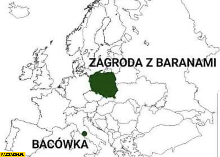 Polska zagroda z baranami Watykan bacówka