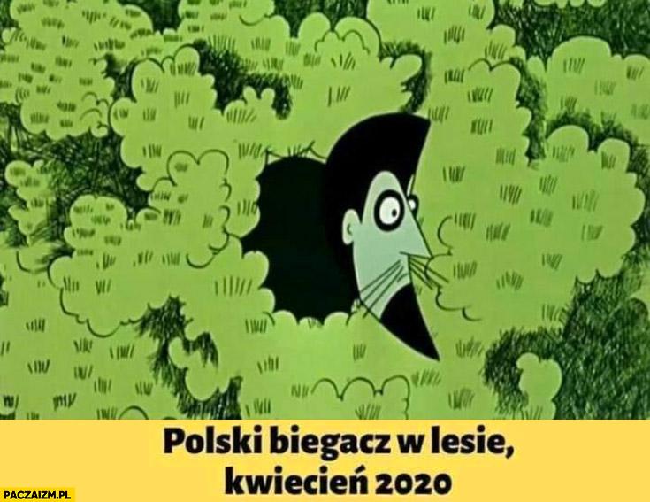 Polski biegacz w lesie, kwiecień 2020 Karramba Baltazar Gąbka