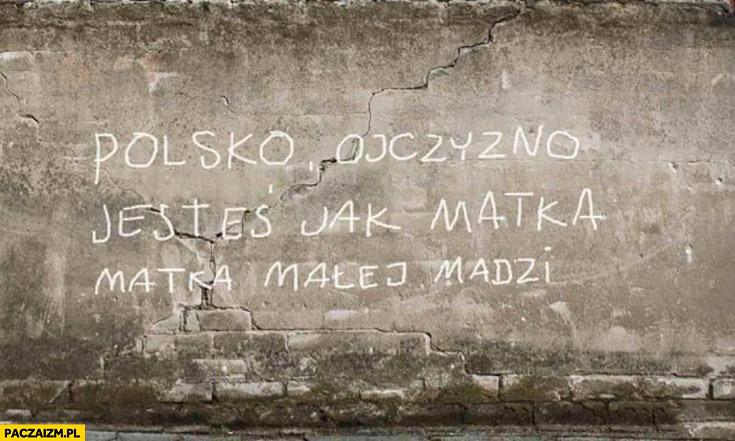Polsko ojczyzno jesteś jak matka małej Madzi napis na murze